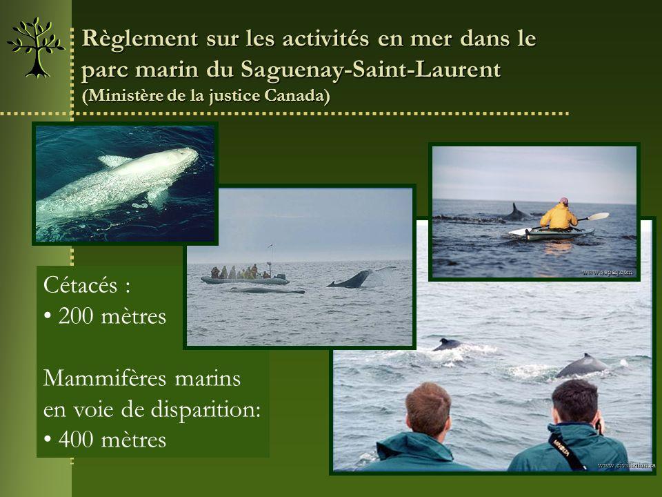 Règlement sur les activités en mer dans le parc marin du Saguenay-Saint-Laurent (Ministère de la justice Canada) Cétacés : 200 mètres Mammifères marin