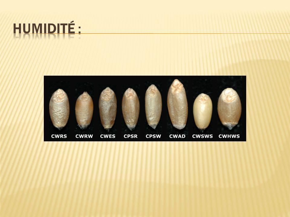 Lindice de Zélény varie de 0 à 70 unités.