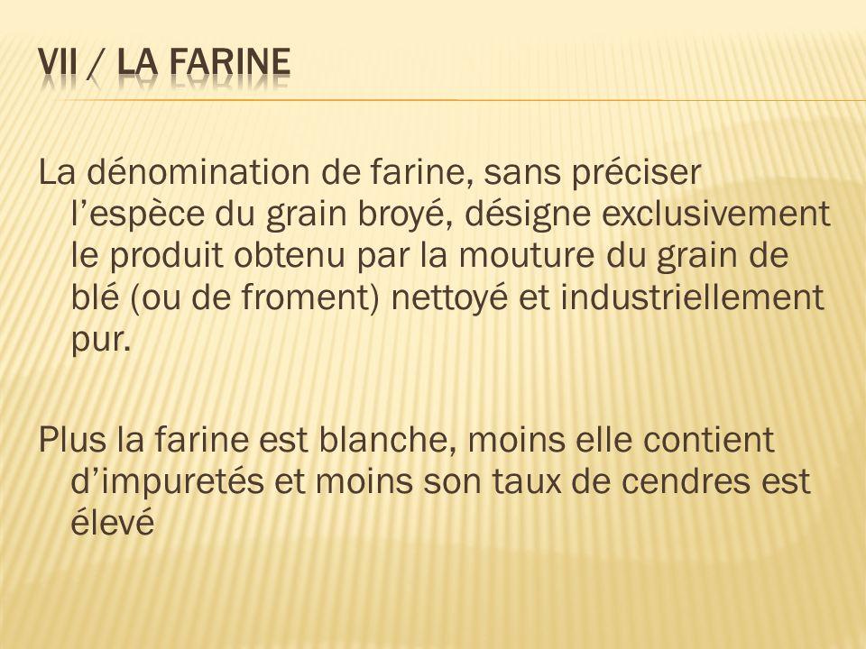 La dénomination de farine, sans préciser lespèce du grain broyé, désigne exclusivement le produit obtenu par la mouture du grain de blé (ou de froment) nettoyé et industriellement pur.