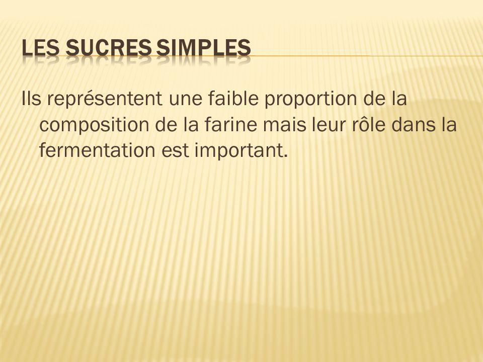 Ils représentent une faible proportion de la composition de la farine mais leur rôle dans la fermentation est important.