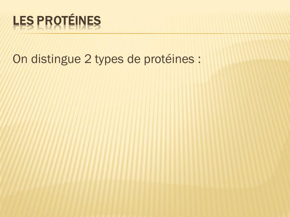 On distingue 2 types de protéines :