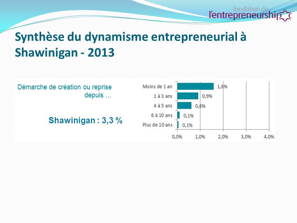 Synthèse du dynamisme (suite) Pour lensemble du Québec, les propriétaires actuels représentent 11,4 % de la population Shawinigan : 6,1 %
