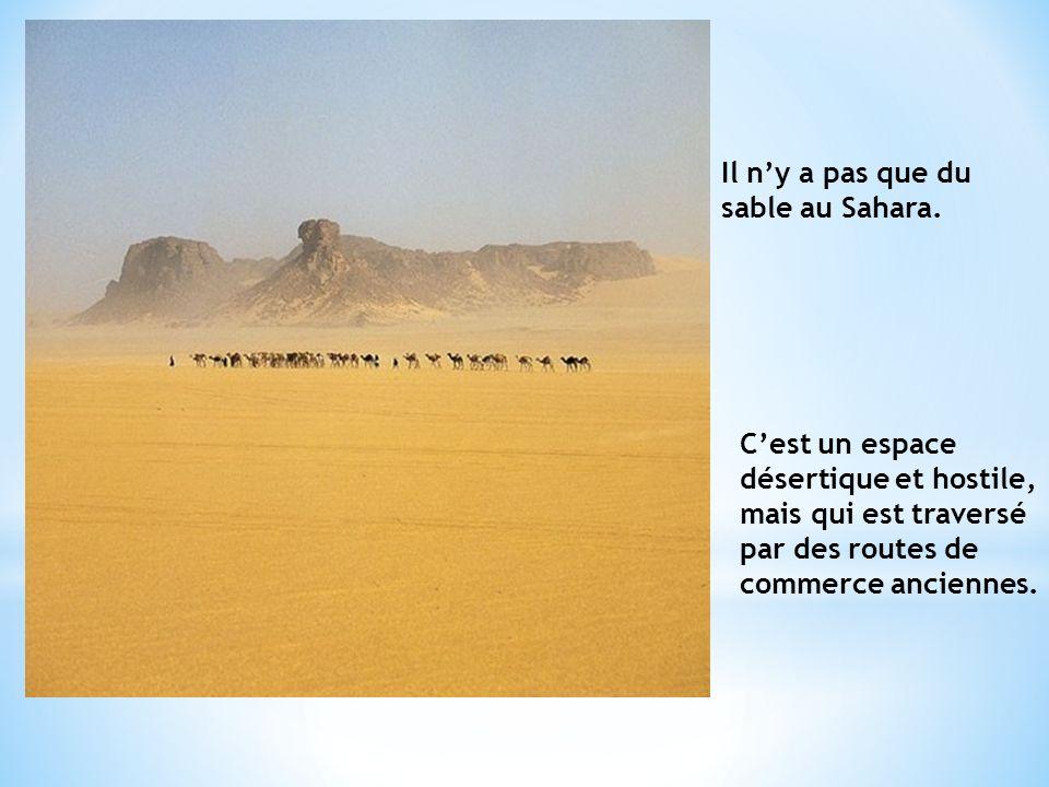 Il ny a pas que du sable au Sahara.