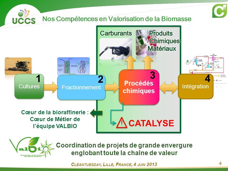 5 Coordonnateur ; 38 M Directeur LIA France-Japon Coordonnateur ; 8,7 M 247 M ; Responsable WP3 Projet startup Aide FRAPPE UMI Miroir UMI CNRS 3464 Inauguration en 2013 Contrats partenariaux Environnement FR CNRS 2638 C LEANTUESDAY, L ILLE, F RANCE, 4 JUIN 2013 Projets Biomasse en Cours : Un Réseau International