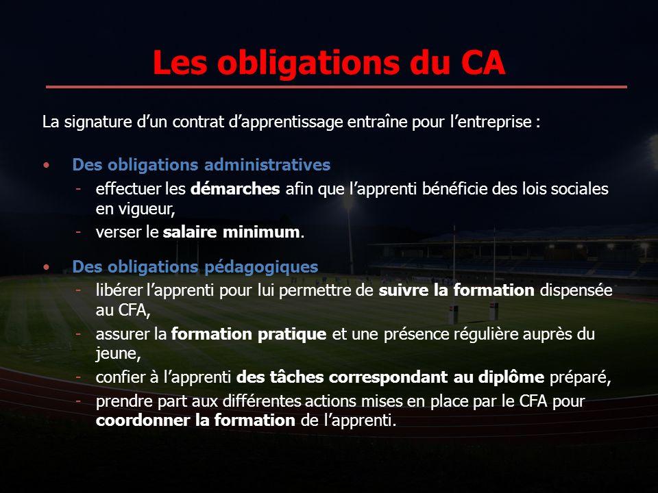 Les obligations du CA La signature dun contrat dapprentissage entraîne pour lentreprise : Des obligations administratives -effectuer les démarches afi