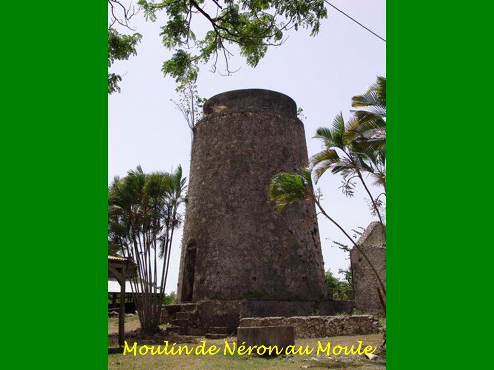 Les Moulins de guadeloupe Ces anciens moulins à vent, situés sur la Grande-Terre, servaient à broyer les tiges de canne à sucre. Formé d'une haute tou