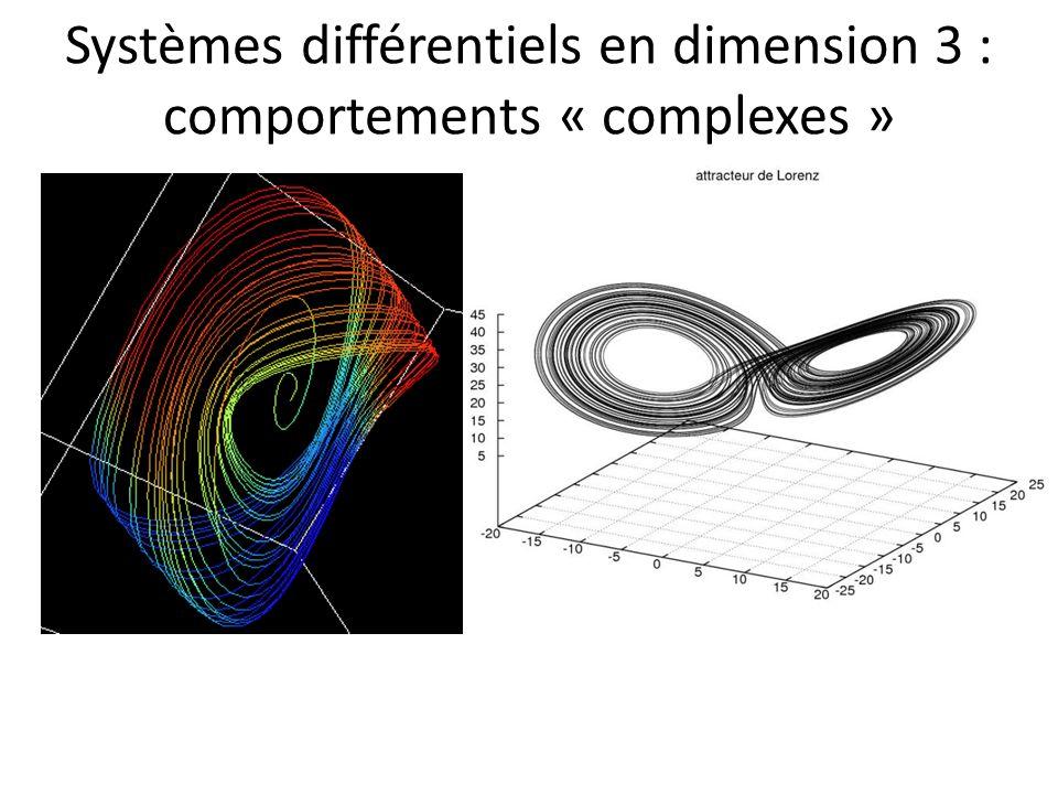 Conséquences : Infinité dorbites périodiques (et orbites périodiques de toutes les périodes) Pour toute paire dorbites périodiques, infinité dorbites homoclines à ces orbites périodiques Sensibilité aux conditions initiales (« effet papillon ») « Shadowing lemma » : impossibilité de savoir, par lobservation des solutions, si le système est purement déterministe, ou sil est soumis à une petite pertubation aléatoire Analogies : S 1 S 1, n, n N [0;1] [0;1], x 10x mod 1 (décalage de la virgule en base 10)