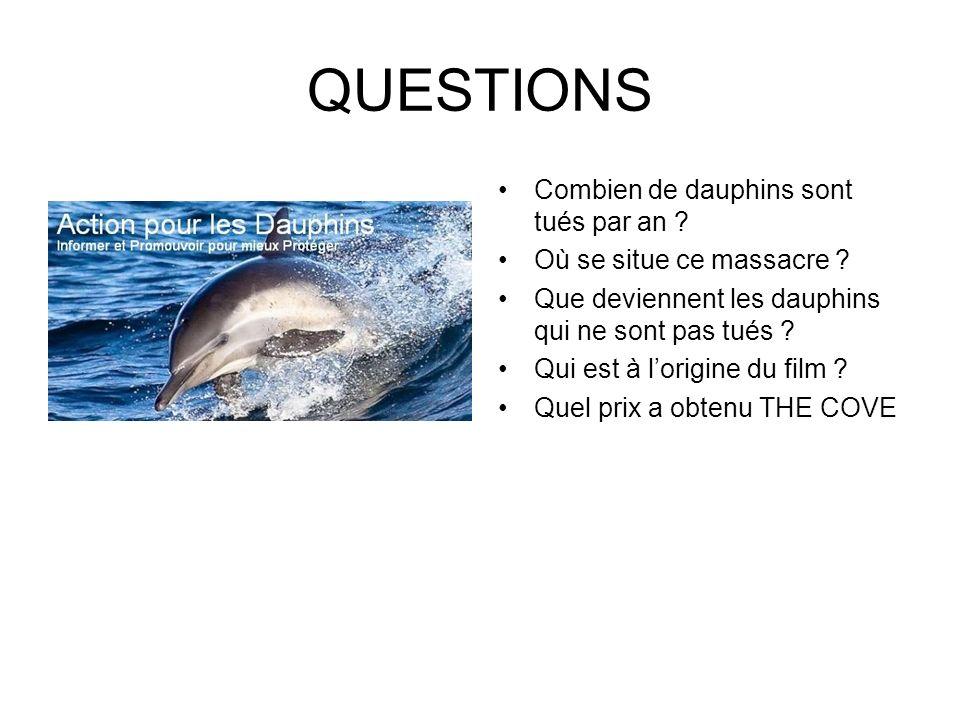 QUESTIONS Combien de dauphins sont tués par an ? Où se situe ce massacre ? Que deviennent les dauphins qui ne sont pas tués ? Qui est à lorigine du fi