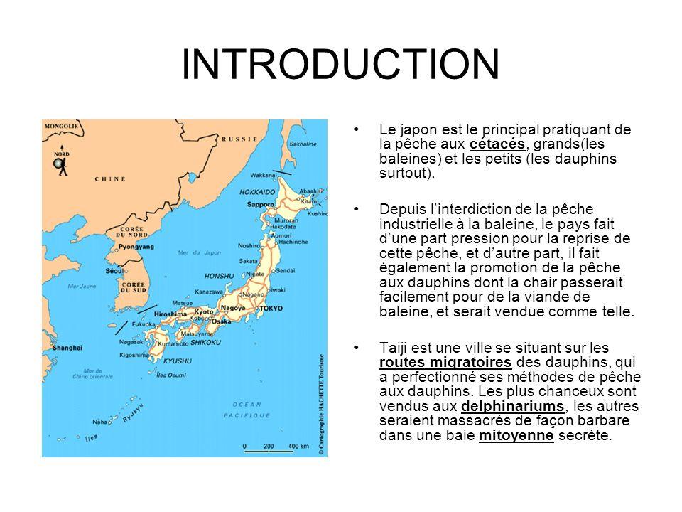 INTRODUCTION Le japon est le principal pratiquant de la pêche aux cétacés, grands(les baleines) et les petits (les dauphins surtout). Depuis linterdic
