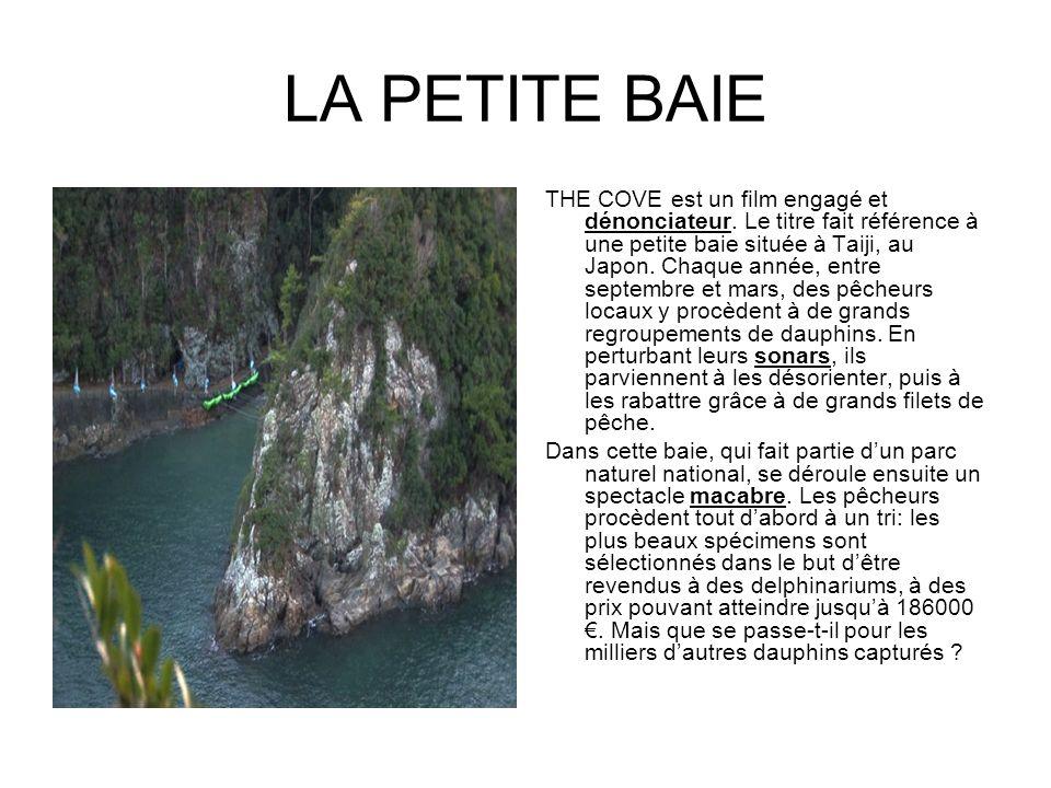 LA PETITE BAIE THE COVE est un film engagé et dénonciateur. Le titre fait référence à une petite baie située à Taiji, au Japon. Chaque année, entre se