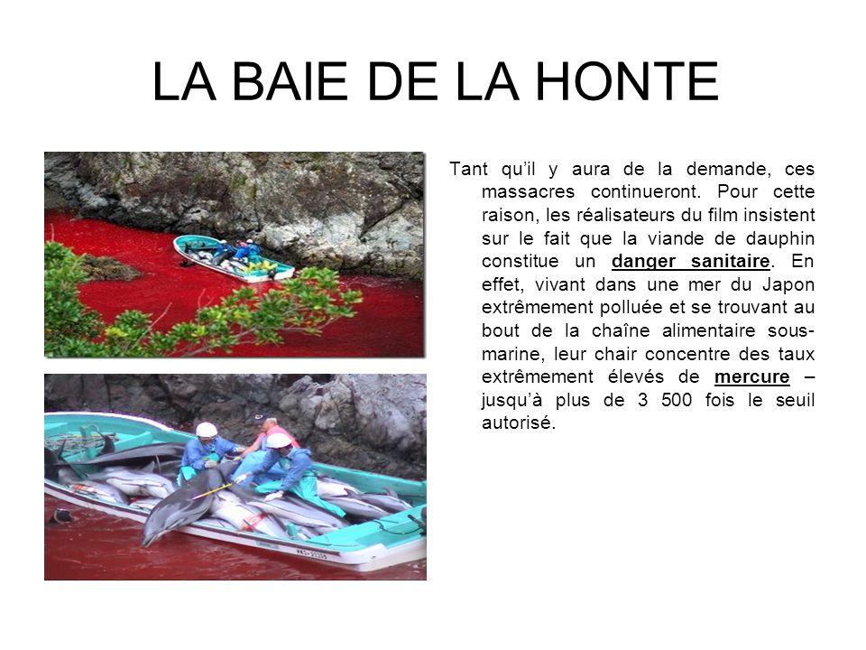 LINDUSTRIE DES DELPHINARIUMS La demande menant à ces massacres ne provient pas seulement de quelques consommateurs japonais (moins de 1% de la population) de viande de dauphin.