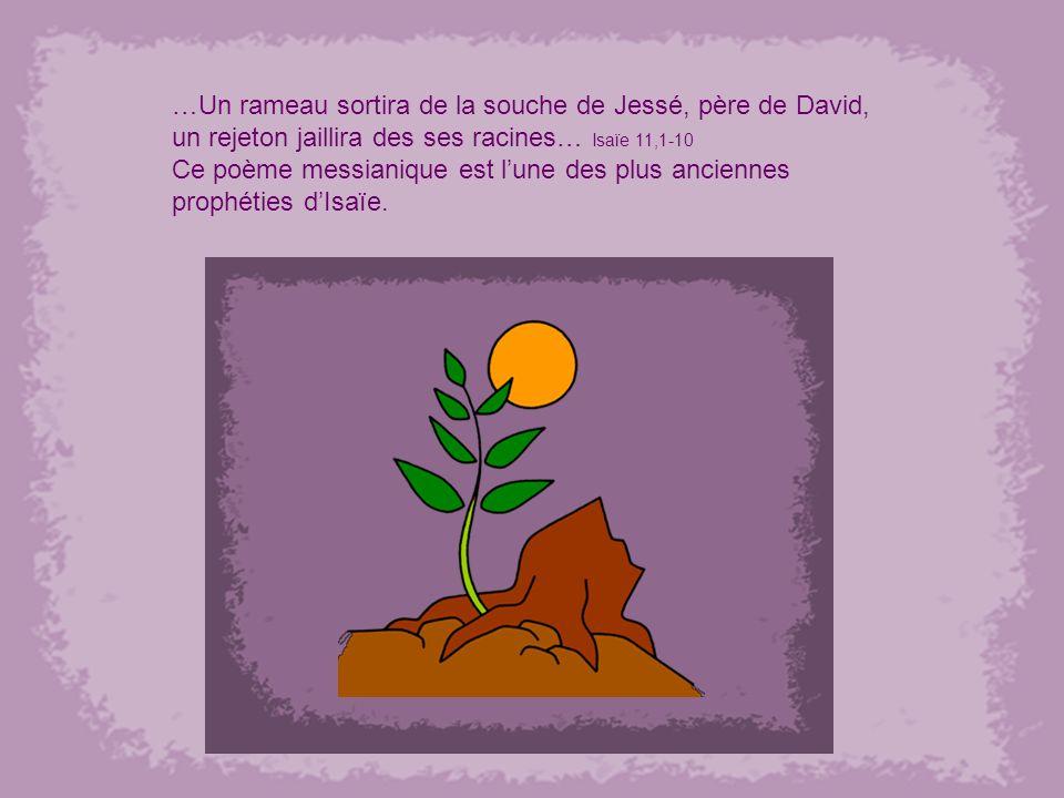 …Un rameau sortira de la souche de Jessé, père de David, un rejeton jaillira des ses racines… Isaïe 11,1-10 Ce poème messianique est lune des plus anciennes prophéties dIsaïe.