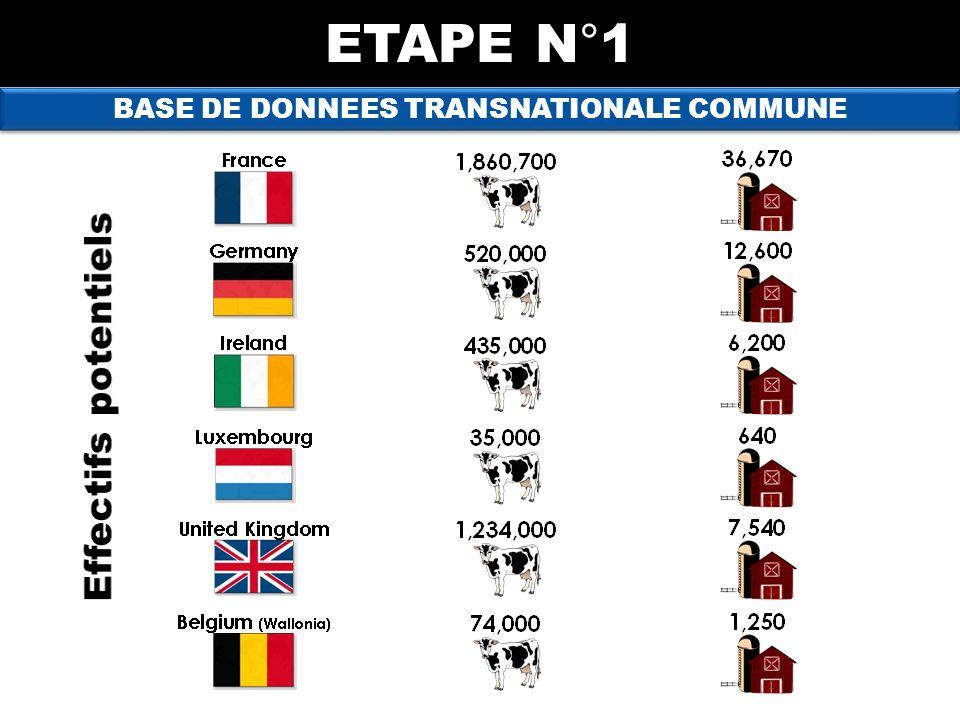 BASE DE DONNEES TRANSNATIONALE COMMUNE ETAPE N°1