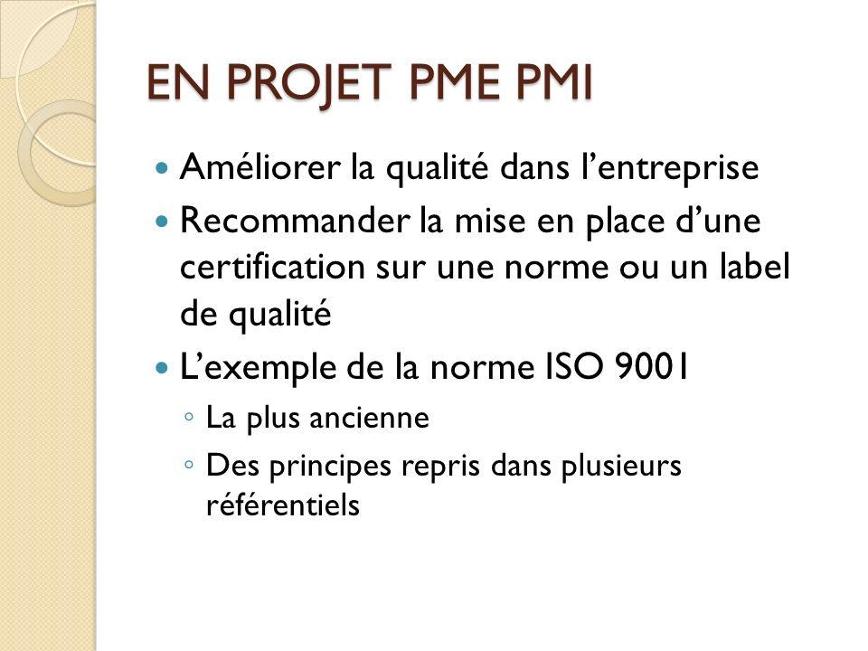 EN PROJET PME PMI Améliorer la qualité dans lentreprise Recommander la mise en place dune certification sur une norme ou un label de qualité Lexemple