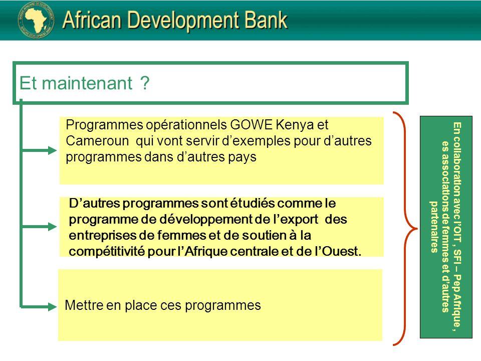 Et maintenant ? Programmes opérationnels GOWE Kenya et Cameroun qui vont servir dexemples pour dautres programmes dans dautres pays Mettre en place ce