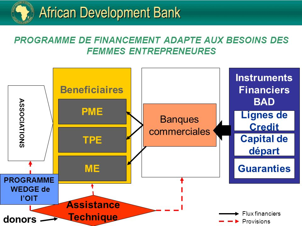 PROGRAMME DE FINANCEMENT ADAPTE AUX BESOINS DES FEMMES ENTREPRENEURES Assistance Technique donors Flux financiers Provisions Instruments Financiers BAD Banques commerciales Capital de départ Lignes de Credit Beneficiaires PME TPE ASSOCIATIONS Guaranties PROGRAMME WEDGE de lOIT ME