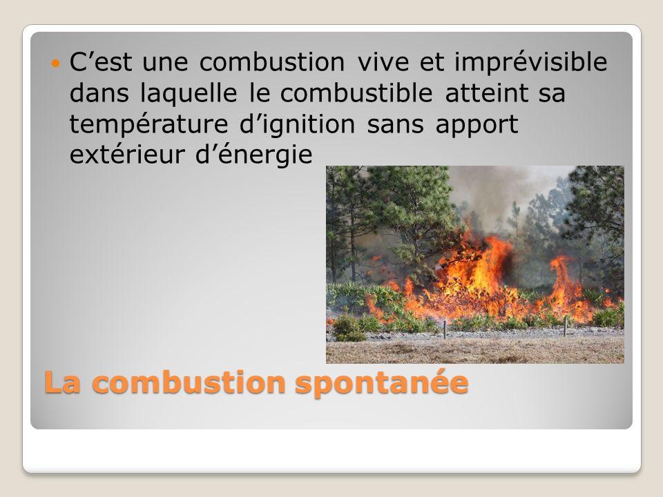 La combustion spontanée Cest une combustion vive et imprévisible dans laquelle le combustible atteint sa température dignition sans apport extérieur d