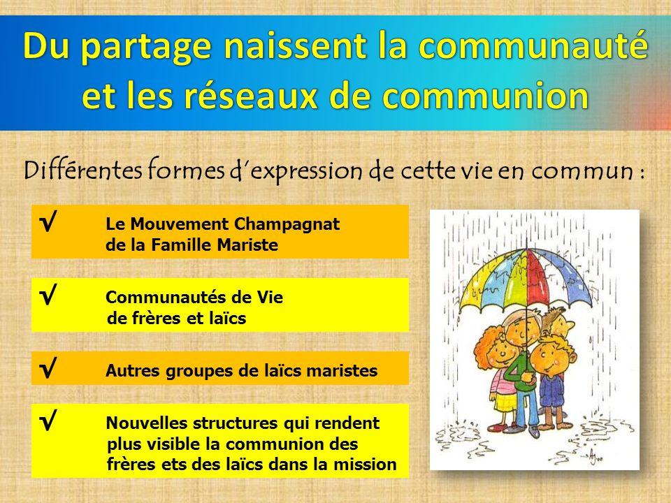 Différentes formes dexpression de cette vie en commun : Le Mouvement Champagnat de la Famille Mariste Communautés de Vie de frères et laïcs Autres gro