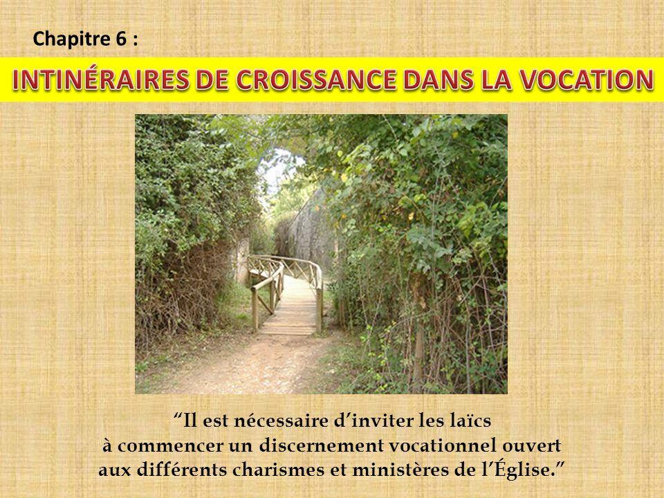 Chapitre 6 : Il est nécessaire dinviter les laïcs à commencer un discernement vocationnel ouvert aux différents charismes et ministères de lÉglise.