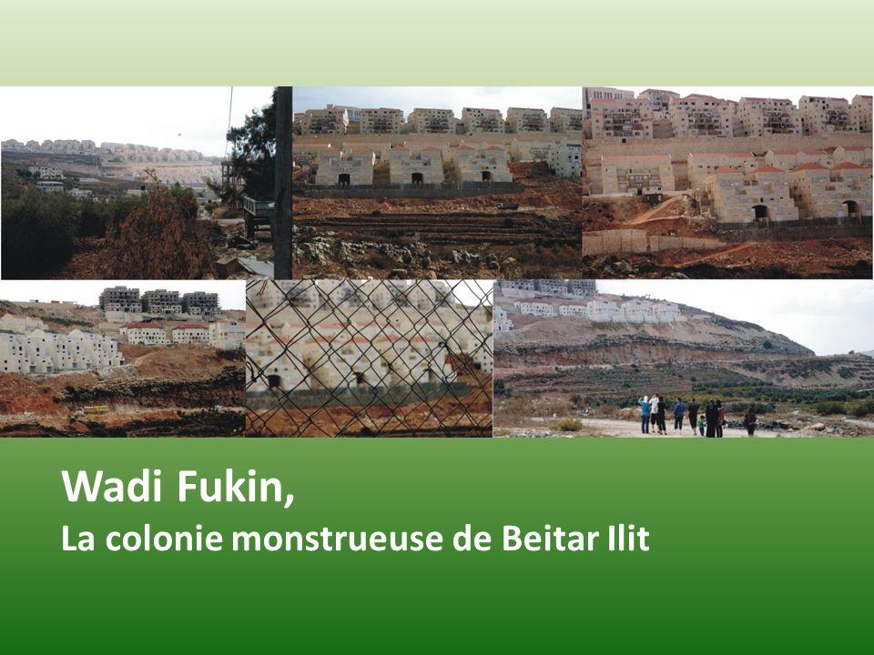 Wadi Fukin, La colonie monstrueuse de Beitar Ilit