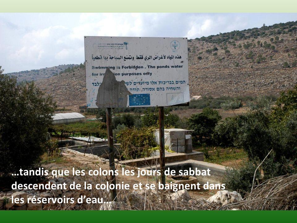 …tandis que les colons les jours de sabbat descendent de la colonie et se baignent dans les réservoirs deau…