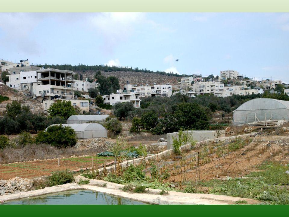 Wadi Fukin, Le programme de modernisation du système dirrigation de la coopérative maraîchère