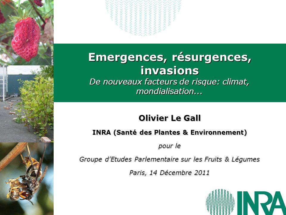 Emergences, résurgences, invasions De nouveaux facteurs de risque: climat, mondialisation... Olivier Le Gall INRA (Santé des Plantes & Environnement)