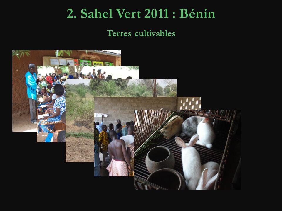 2. Sahel Vert 2011 : Bénin Terres cultivables
