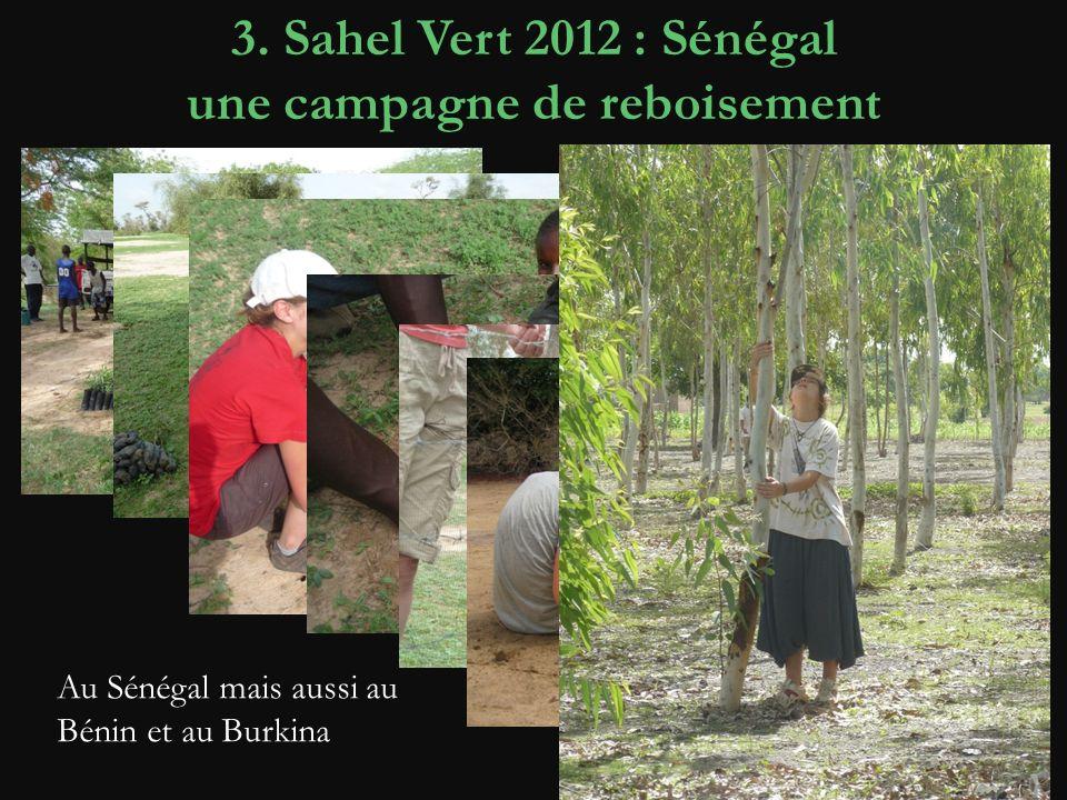 3. Sahel Vert 2012 : Sénégal une campagne de reboisement Achat des plants en pépinière Achat de matériel pour le reboisement Achat de matériel pour la