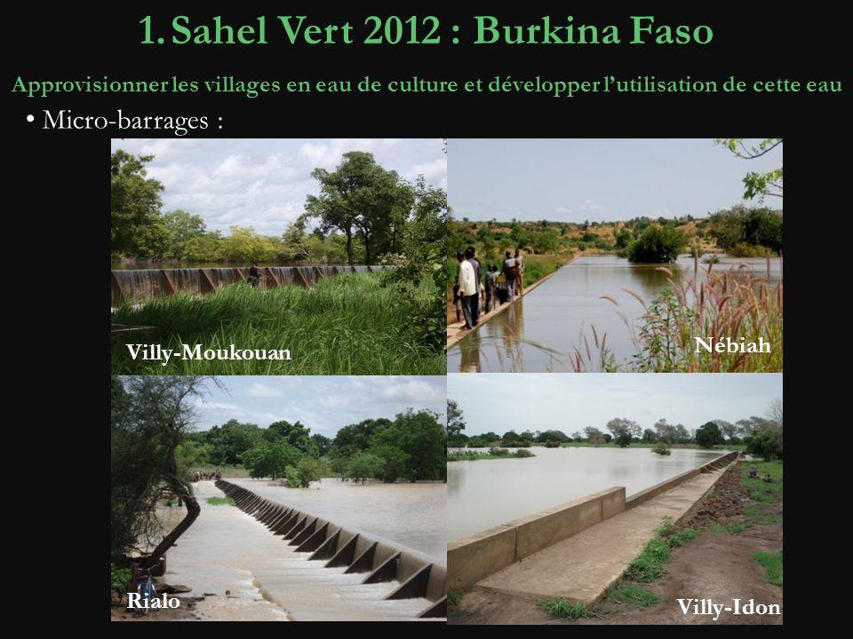 Avant 1.Sahel Vert 2012 : Burkina Faso Approvisionner les villages en eau de culture et développer lutilisation de cette eau Nébiah Villy-Idon Rialo Villy-Moukouan Micro-barrages :