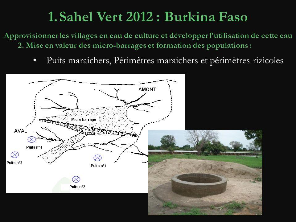 2. Mise en valeur des micro-barrages et formation des populations : 1.Sahel Vert 2012 : Burkina Faso Approvisionner les villages en eau de culture et