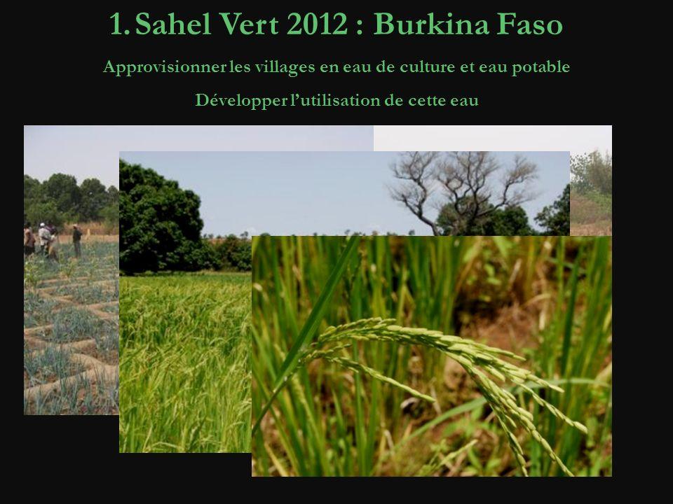 1.Sahel Vert 2012 : Burkina Faso Approvisionner les villages en eau de culture et eau potable Développer lutilisation de cette eau