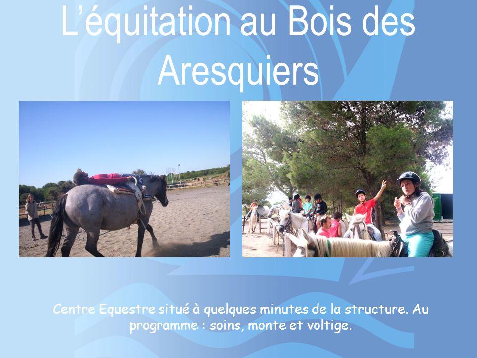 Léquitation au Bois des Aresquiers Centre Equestre situé à quelques minutes de la structure. Au programme : soins, monte et voltige.