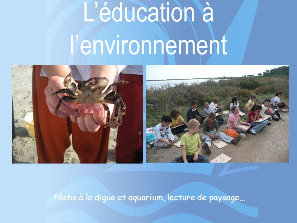 Léducation à lenvironnement Pêche à la digue et aquarium, lecture de paysage…