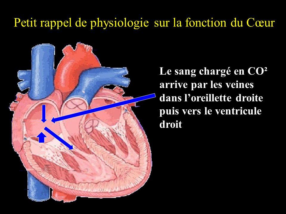 Petit rappel de physiologie sur la fonction du Cœur Le sang chargé en CO² arrive par les veines dans loreillette droite puis vers le ventricule droit