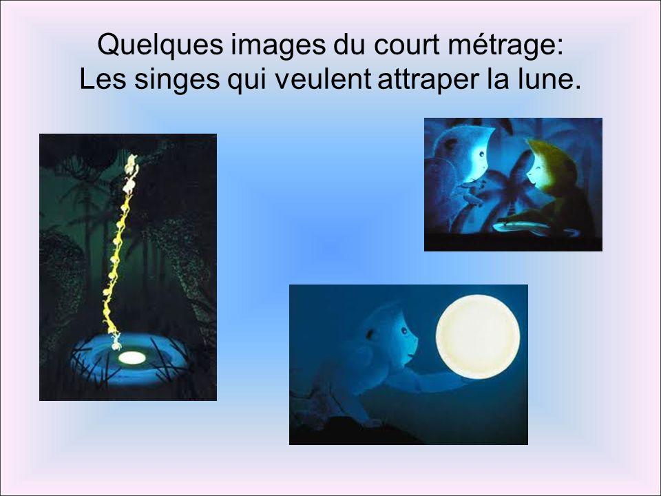 Quelques images du court métrage: Les singes qui veulent attraper la lune.
