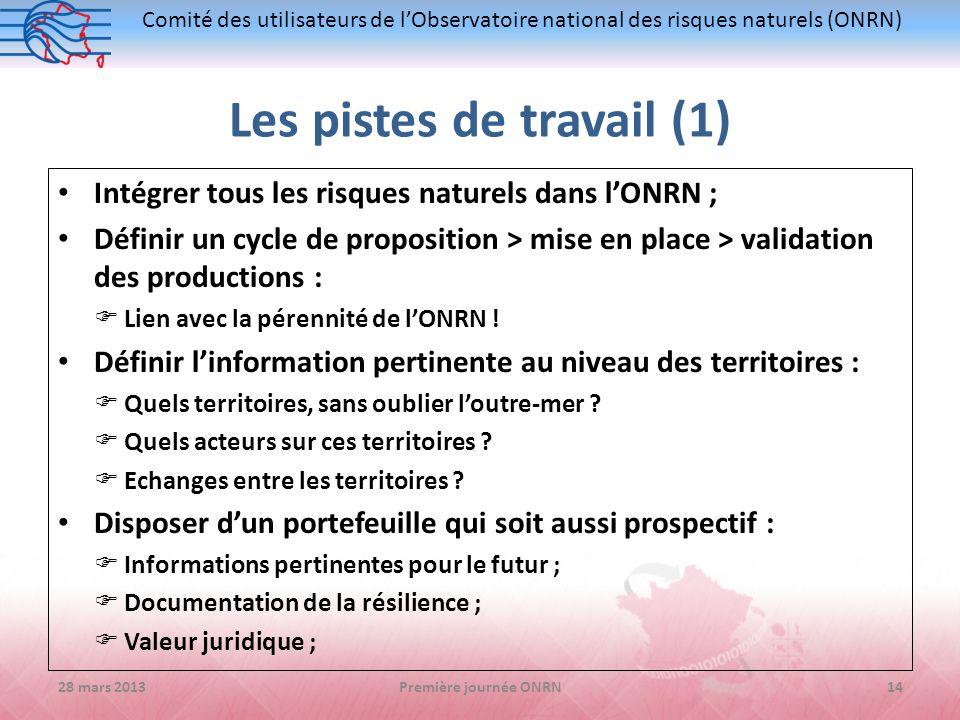 Comité des utilisateurs de lObservatoire national des risques naturels (ONRN) Les pistes de travail (1) Intégrer tous les risques naturels dans lONRN