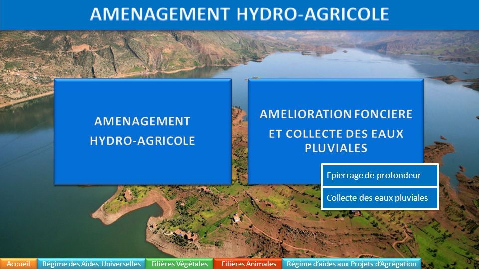 Accueil Régime daides aux Projets dAgrégation Régime des Aides Universelles Hydro-Agricole Filières Végétales Filières Animales