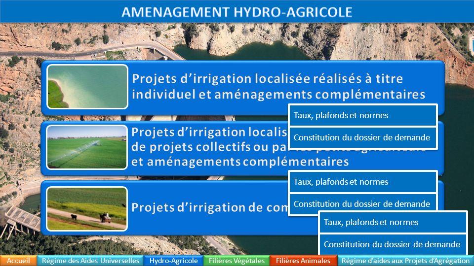Accueil Régime daides aux Projets dAgrégation Constitution du dossier Régime des Aides Universelles Hydro-Agricole Filières Végétales Filières Animales