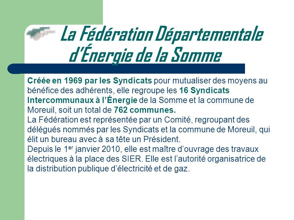 Créée en 1969 par les Syndicats pour mutualiser des moyens au bénéfice des adhérents, elle regroupe les 16 Syndicats Intercommunaux à lÉnergie de la S