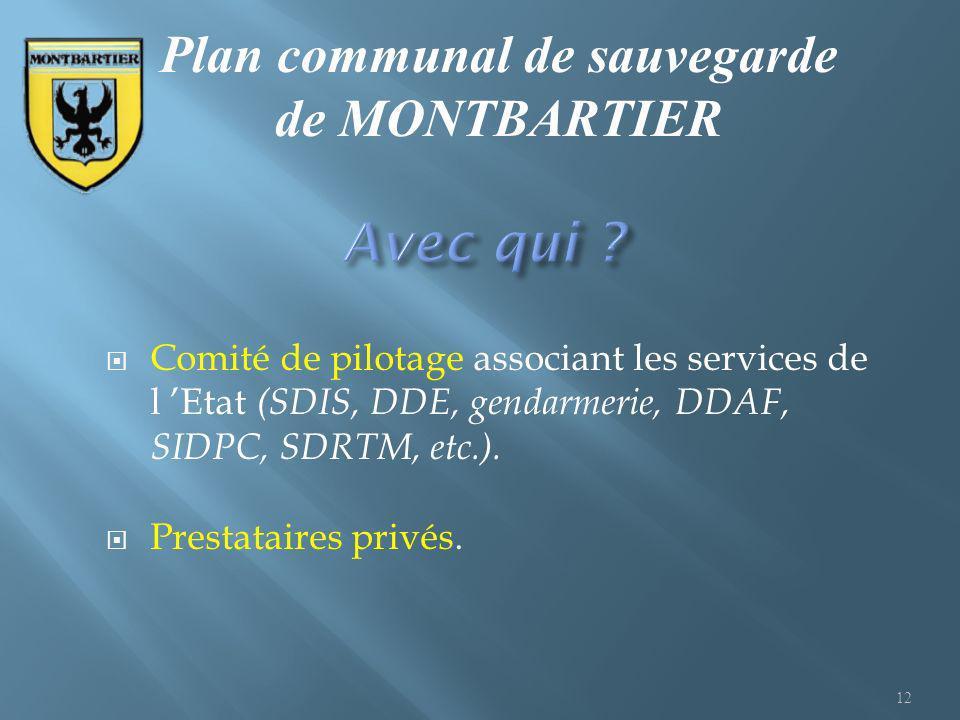Comité de pilotage associant les services de l Etat (SDIS, DDE, gendarmerie, DDAF, SIDPC, SDRTM, etc.). Prestataires privés. 12 Plan communal de sauve