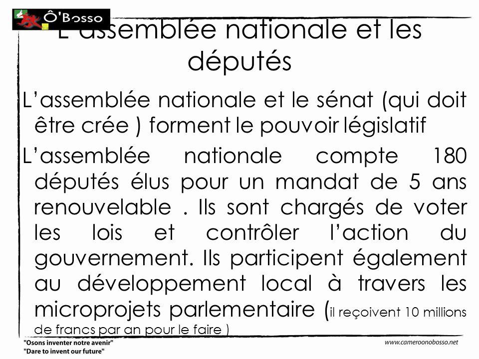 Lassemblée nationale et les députés Lassemblée nationale et le sénat (qui doit être crée ) forment le pouvoir législatif Lassemblée nationale compte 1
