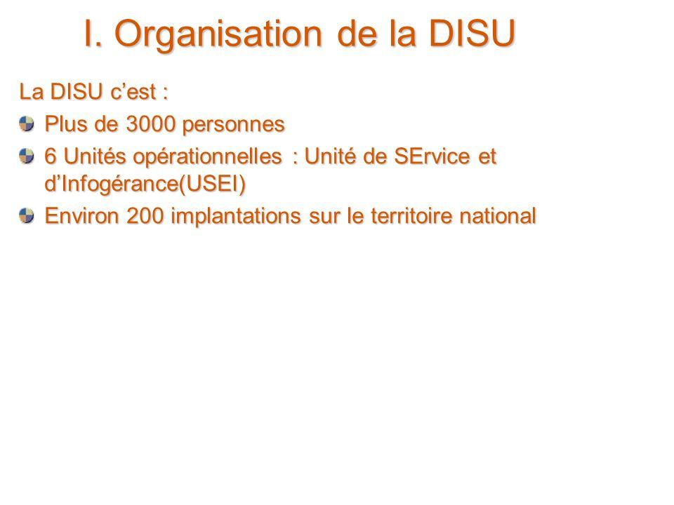 24 juin 2005 4 I. Organisation de la DISU La DISU cest : Plus de 3000 personnes 6 Unités opérationnelles : Unité de SErvice et dInfogérance(USEI) Envi