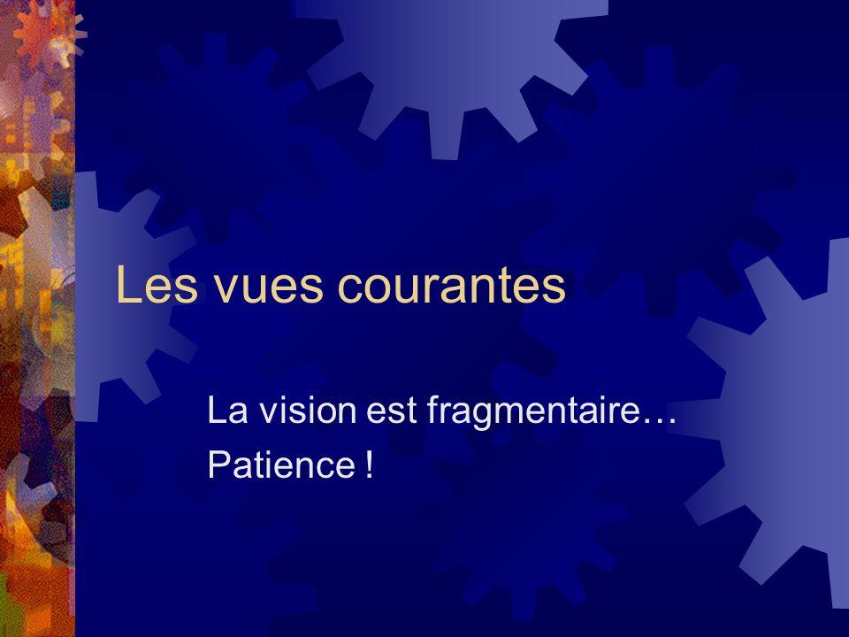 Les vues courantes La vision est fragmentaire… Patience !