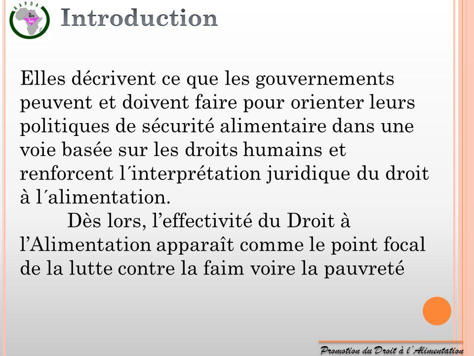 Promotion du Droit à lAlimentation Elles décrivent ce que les gouvernements peuvent et doivent faire pour orienter leurs politiques de sécurité alimen