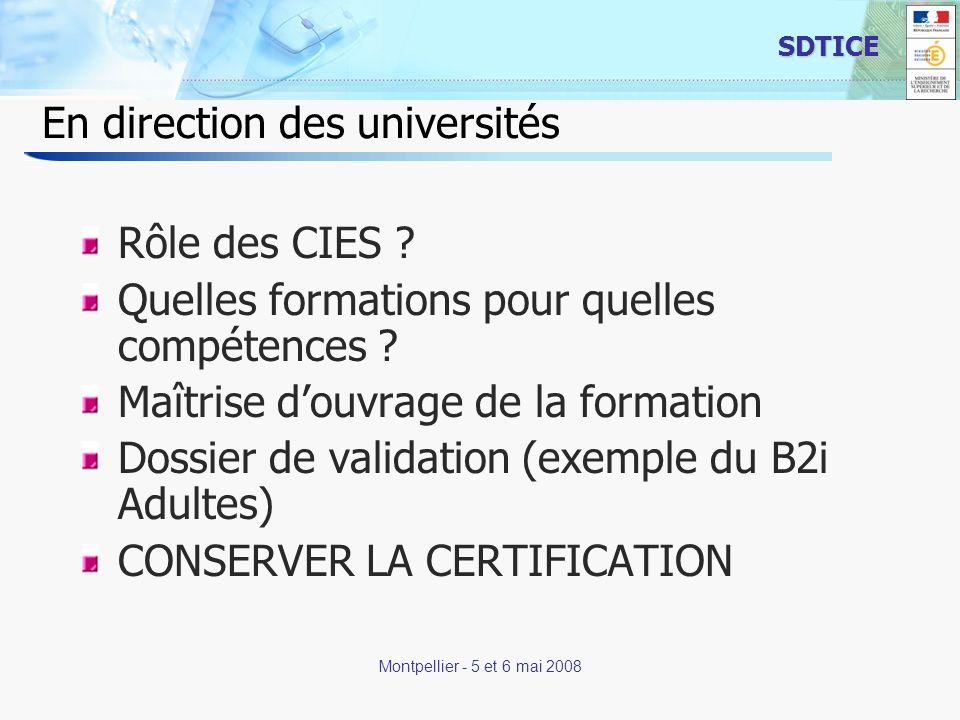 19 SDTICE Montpellier - 5 et 6 mai 2008 En direction des universités Rôle des CIES ? Quelles formations pour quelles compétences ? Maîtrise douvrage d
