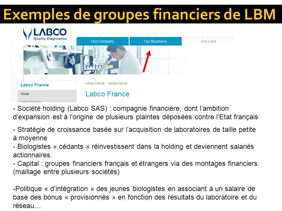 Exemples de groupes financiers de LBM - Société holding (Labco SAS) : compagnie financière, dont lambition dexpansion est à lorigine de plusieurs plai