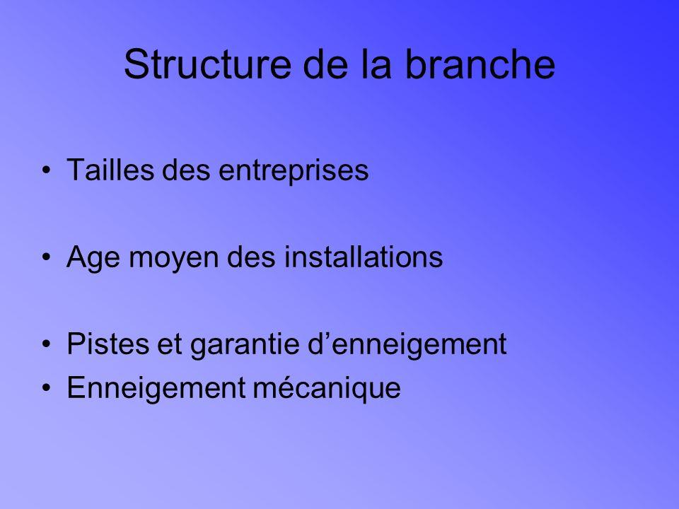 Structure de la branche Tailles des entreprises Age moyen des installations Pistes et garantie denneigement Enneigement mécanique