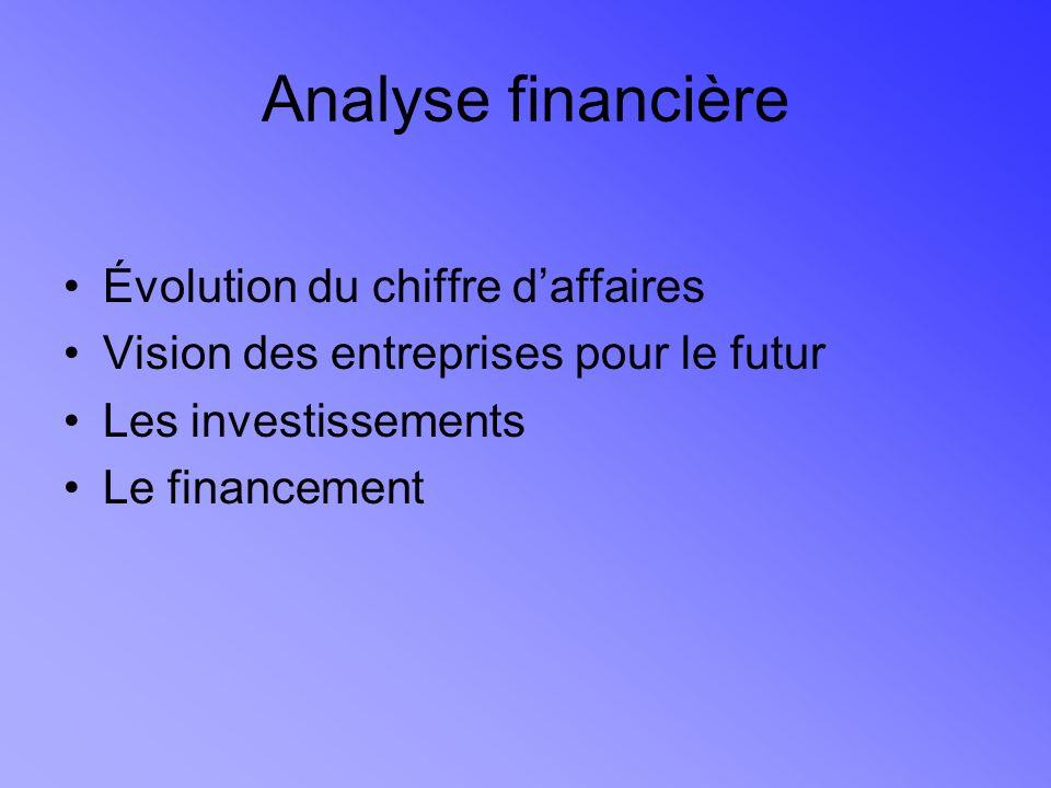 Analyse financière Évolution du chiffre daffaires Vision des entreprises pour le futur Les investissements Le financement
