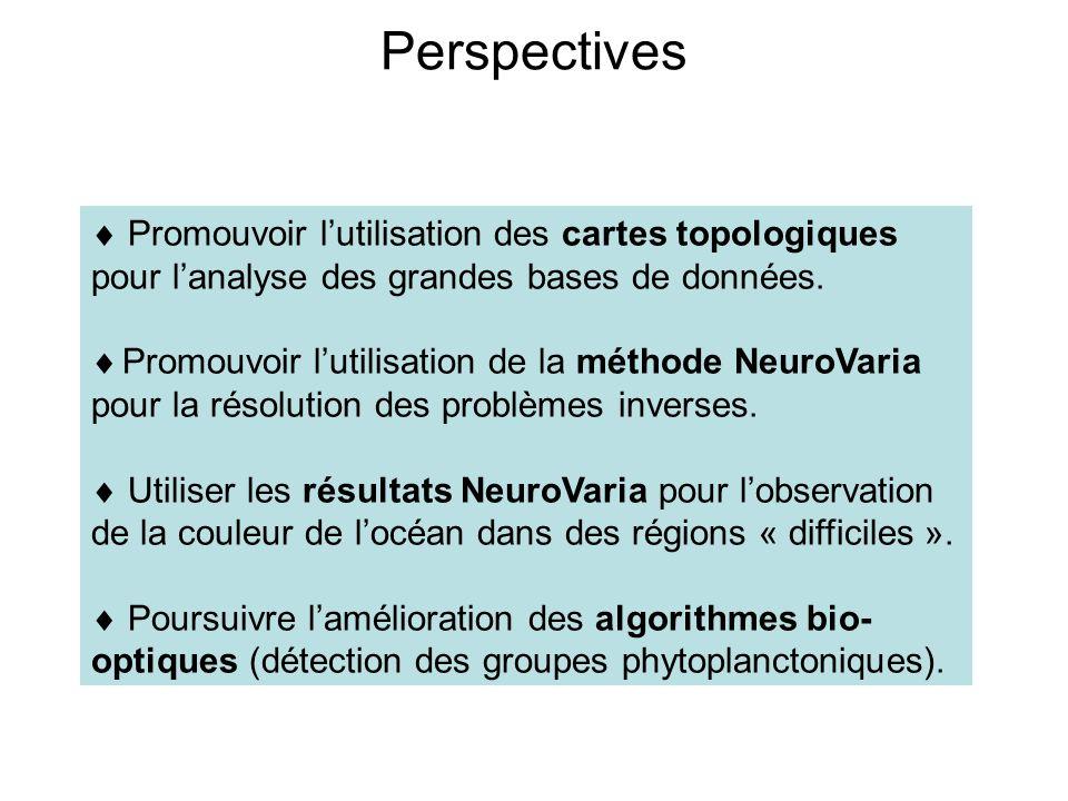 Perspectives Promouvoir lutilisation des cartes topologiques pour lanalyse des grandes bases de données. Promouvoir lutilisation de la méthode NeuroVa